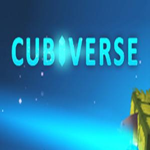 Cubiverse