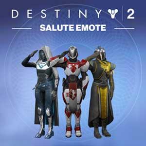 Destiny 2 Salute Emote
