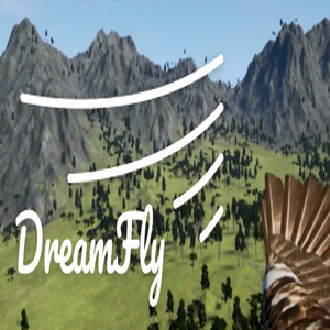 Buy DreamFly VR CD Key Compare Prices