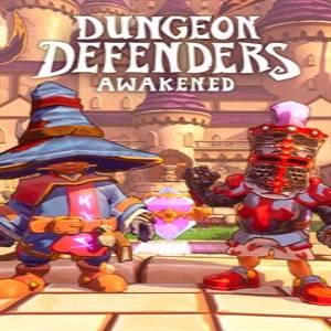 Dungeon Defenders Awakened Original Hero Paper Masks