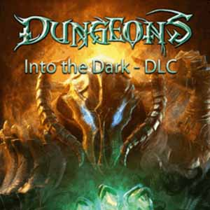 Buy Dungeons Into the Dark CD Key Compare Prices