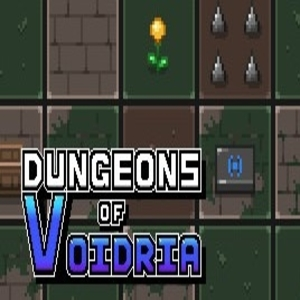 Dungeons of Voidria