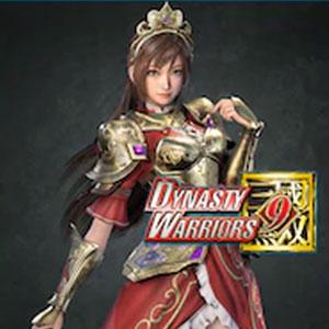 DYNASTY WARRIORS 9 Sun Shangxiang Knight Costume