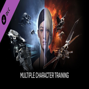 EVE Online Multiple Character Training
