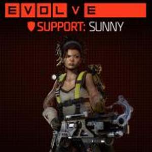 Buy Evolve Sunny (Fourth Support Hunter) CD Key Compare Prices