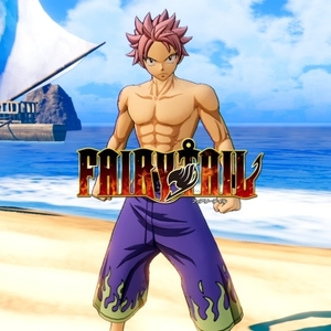 FAIRY TAIL Natsu's Costume Special Swimsuit