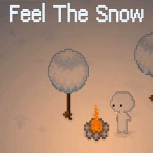 Buy Feel The Snow CD Key Compare Prices