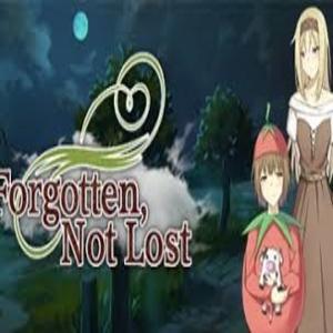 Forgotten Not Lost A Kinetic Novel