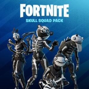 Fortnite Skull Squad Pack
