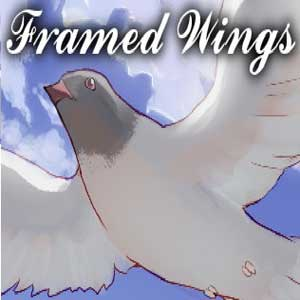 Framed Wings