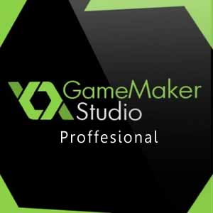 GameMaker Studio Proffesional
