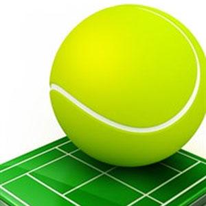 Grand Slam Tennis Open