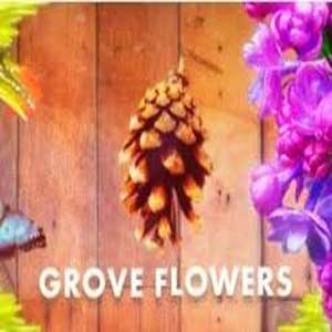 Buy Grove flowers CD Key Compare Prices