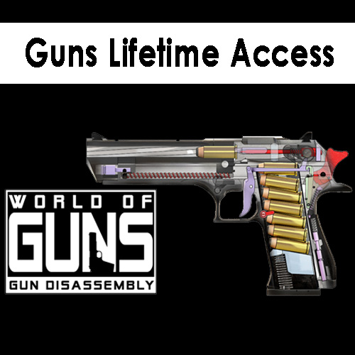 Buy Guns Lifetime Access CD Key Compare Prices