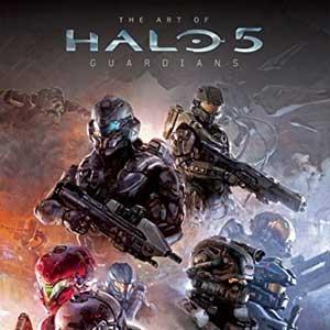 Halo 5 Guardians Dauntless Visor REQ Pack
