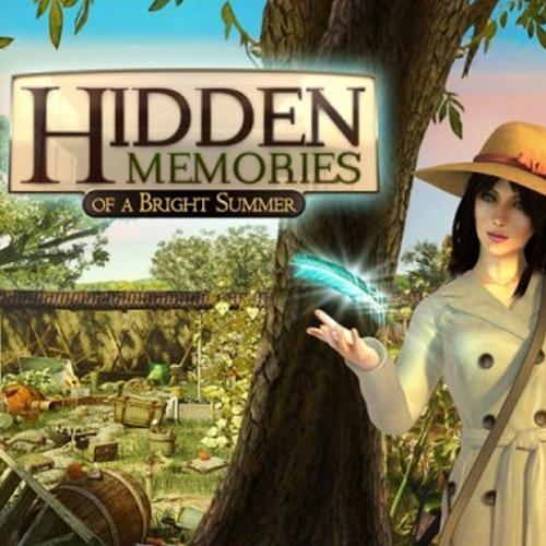 Hidden Memories of a Bright Summer