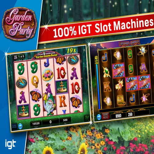 Buy IGT Slots Garden Party CD Key Compare Prices