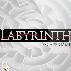 Buy Labyrinth Escape CD Key Compare Prices