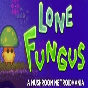 Lone Fungus