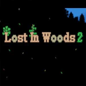 Buy Lost in Woods 2 CD Key Compare Prices