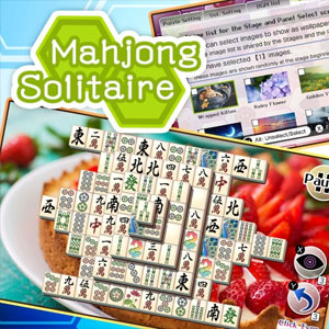 Mahjong Solitaire Refresh Ex Panels