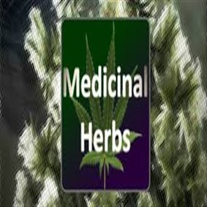 Buy Medical Herbs Cannabis Grow Simulator CD Key Compare Prices