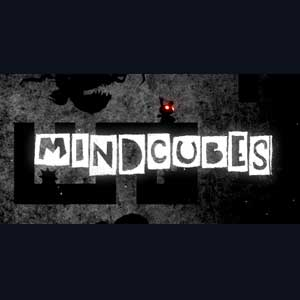 MINDCUBES Inside the Twisted Gravity Puzzle