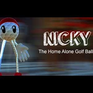 Buy Nicky The Home Alone Golf Ball CD Key Compare Prices