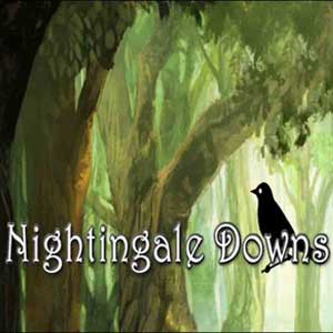 Buy Nightingale Downs CD Key Compare Prices