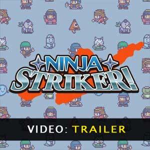 Ninja Striker