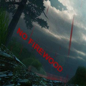 No Firewood