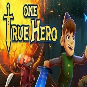 One True Hero