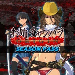 Onee Chanbara Origin Season Pass