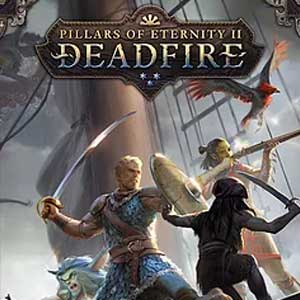 Buy Pillars of Eternity 2 Deadfire Nintendo Switch Compare Prices
