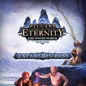 Pillars of Eternity The White March Expansion Pass