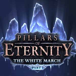 Buy Pillars of Eternity The White March Part 1 CD Key Compare Prices
