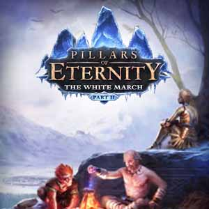 Buy Pillars of Eternity The White March Part Two CD Key Compare Prices