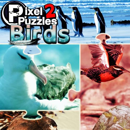 Pixel Puzzles 2 Birds