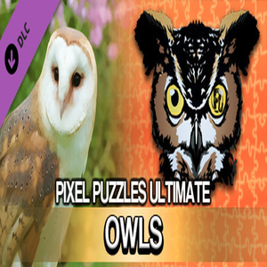 Pixel Puzzles Ultimate Puzzle Pack Owls