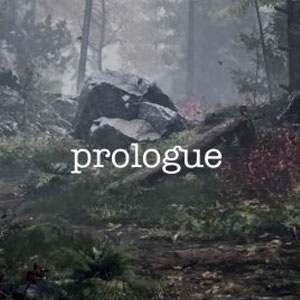 Playerunknown's Prologue