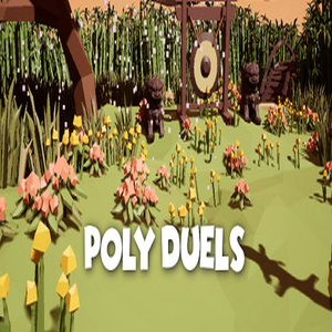 Poly Duels