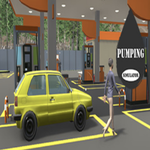 Pumping Simulator