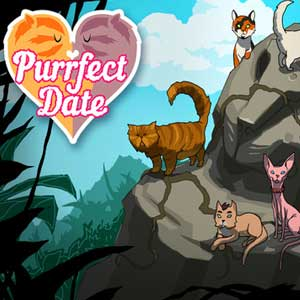 Purrfect Date
