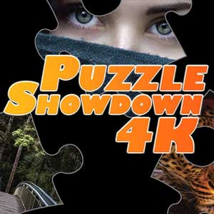Buy Puzzle Showdown 4K CD Key Compare Prices