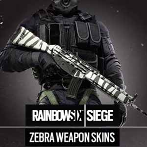 Rainbow Six Siege Zebra Weapon Skin