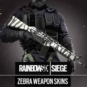 Buy Rainbow Six Siege Zebra Weapon Skin CD Key Compare Prices