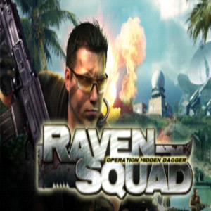 Raven Squad Operation Hidden Dagger