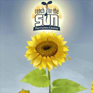 Buy Reach for the Sun CD Key Compare Prices