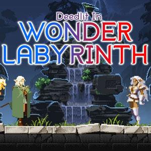 Record of Lodoss War Deedlit in Wonder Labyrinth