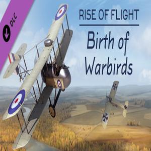 Rise of Flight Birth of Warbirds